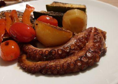 hobotnica1